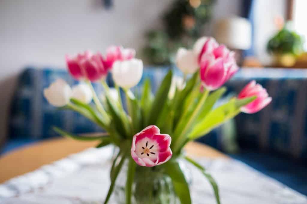 Blumenstrauss im Hotel Gasthof Nutzkaser